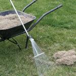 Blog: Er din græsplæne sur?