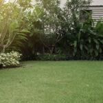 Blog: Gør græsplænen forårsklar